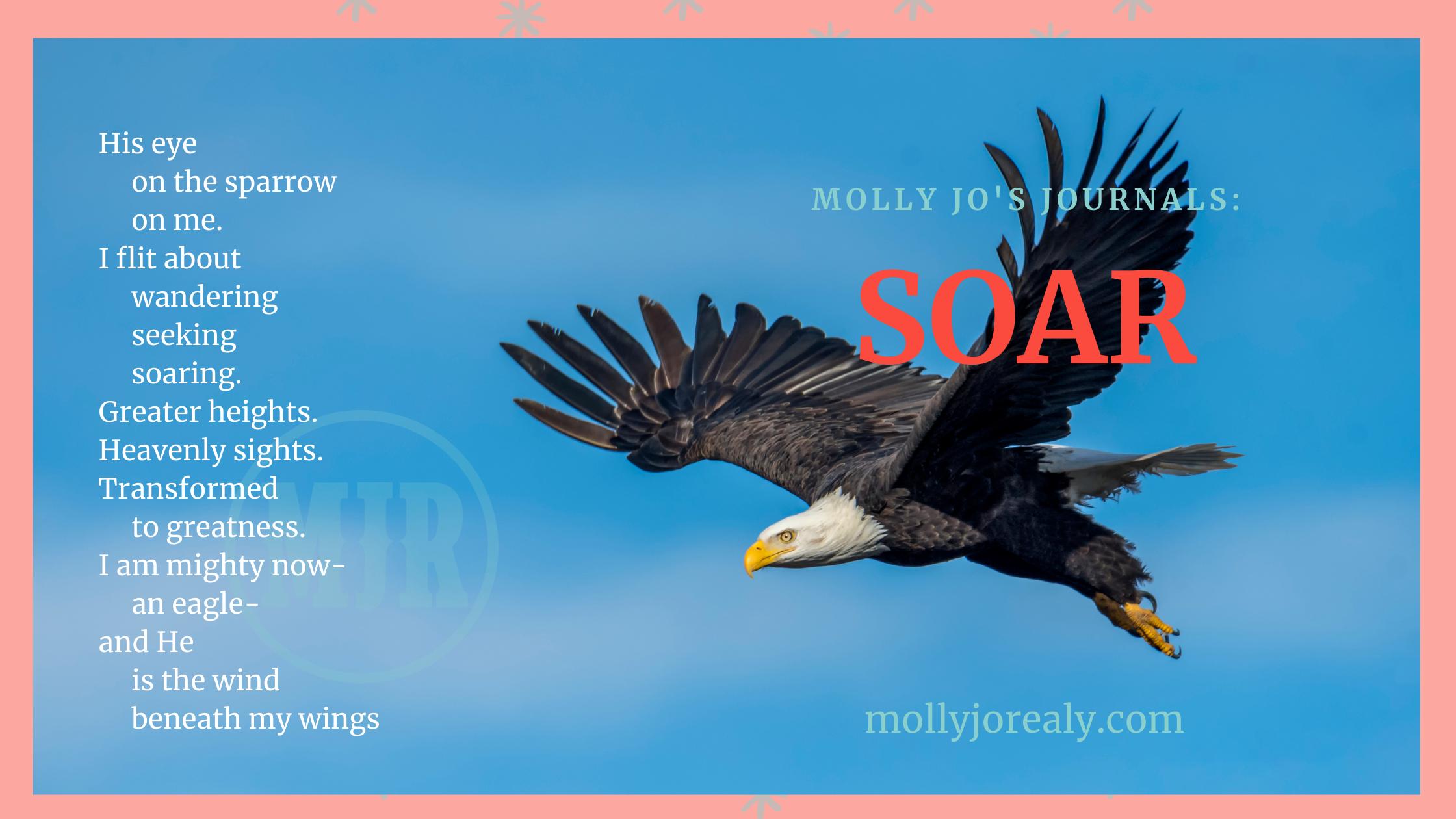 Molly Jo's Journals: SOAR poem